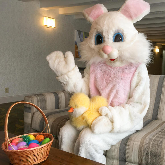 easter bunny on couch